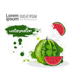 watermelon hand drawn watercolor fruit on white vector image