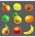 set of low poly fruits vector image