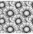 beautiful seamless pattern with flowers daisy vector image vector image