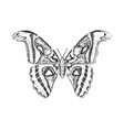 butterfly or wild insects atlas moth mystical vector image vector image