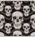 decorative human skulls seamless pattern vector image