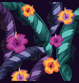 tropical flowers with natural leaves background vector image vector image