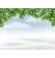 Winter background with pine branches vector image vector image