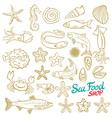 Sea set Stingray jellyfish seaweed fish starfish vector image