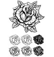black and white graphic realistic detailed rose vector image vector image