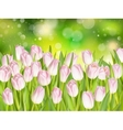 Easter spring background EPS 10 vector image vector image