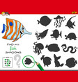 educational shadows game with fish characters vector image vector image