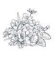 hand drawn bouquet spring flowers and vector image vector image