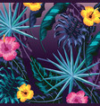 natural flowers with plants leaves background vector image vector image