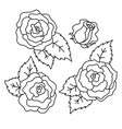 roses black and white linear drawing vector image vector image