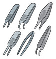 set of forceps vector image