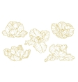 Set of one-colored outlined tulips vector image vector image
