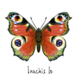 Watercolor butterfly vector image vector image