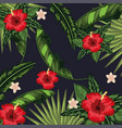 flowers with tropical leaves plants background vector image vector image