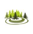 Forest glade with spruces on green grassy meadow vector image vector image