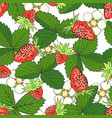 hand drawn seamless pattern with strawberry vector image