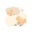 mother sheep and balamb cute animal family