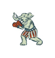 republican elephant boxer mascot isolated etching vector image vector image