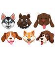 set of dog breeds head vector image