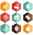 solid icons fruits vector image vector image