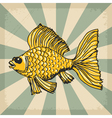 vintage grunge background with goldfish vector image vector image