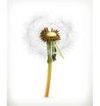 Head of dandelion summer flowers icon vector image