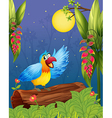 A colorful parrot in the middle of the woods vector image vector image