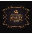 elegant quality frame design vector image vector image