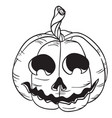 pumpkin black vector image