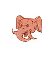 republican elephant mascot head etching vector image vector image