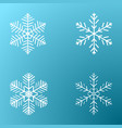 snowflakes on a cold background vector image
