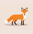 standing fox flat vector image vector image