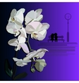 White orchid witha dating couple vector image vector image
