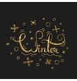 Winter Golden Lettering Design Typographic vector image vector image
