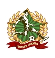 Soccer championship label vector image