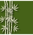 bamboo green background vector image