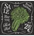 celery logo design template fresh vector image vector image