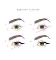 eye make up tutorial how to apply eyeliner vector image vector image