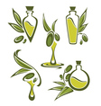 green olive and oil vector image vector image