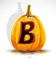 Halloween Pumpkin B vector image vector image