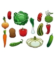 Healthy organic fresh vegetables on white vector image vector image
