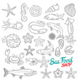Set of Sketch Sea Food vector image