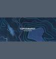 topography contour terrain vector image vector image