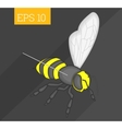 bee isometric vector image