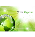 Elegant green background vector image vector image