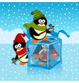 ice cube with penguin vector image