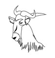 wildebeest head african wildlife animal vector image vector image