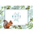winter squirrel horizontal banner vector image