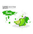 lime hand drawn watercolor fruit on white vector image