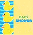 baby shower label with rubber ducks vector image